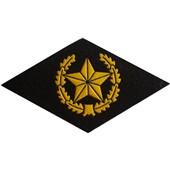 Nášivka symbol příslušnosti na hruď - Motostřelci a pěchota
